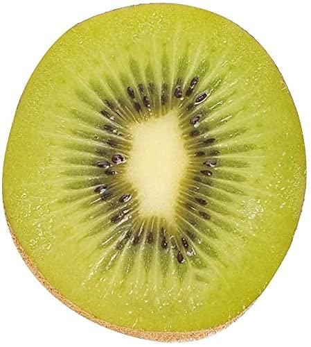 ゼスプリ グリーンキウイ 大玉 約1.6kg 化粧箱 ニュージーランド産 New Zealand Zespri SunGold Kiwi Fruit ギフト