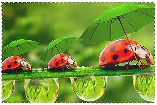 Funny Ladybug Holding Umbrellas - Juego de 6 manteles individuales lavables con diseño de mariquita