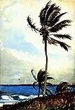 Winslow Homer Pintura De Fama Mundial Palmera, Nassau Pintura Al Óleo Por Números Para Principiantes En Pintura Sobre Lienzo
