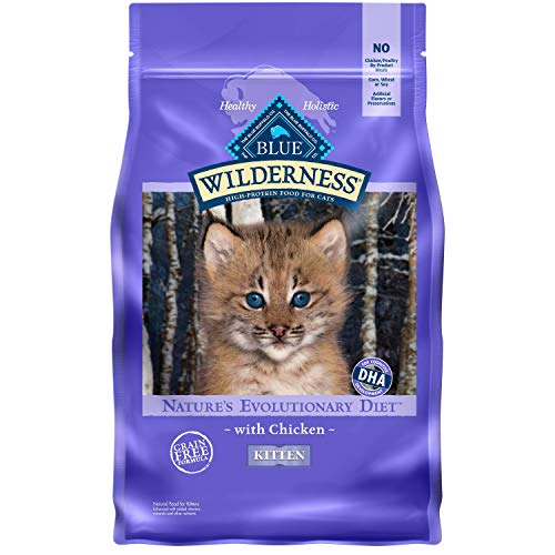 Blue Buffalo Wilderness High Protein Grain Free Dry Kitten Food