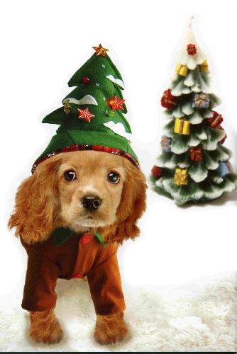 Dogs & Co. Costume de sapin de Noël pour chien 50 cm