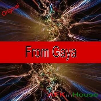 From Gaya