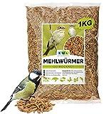 EWL Naturprodukte Gusanos secos de harina, 1 kg = 6500 ml, aperitivo para pájaros, peces, tortugas, roedores y reptiles.