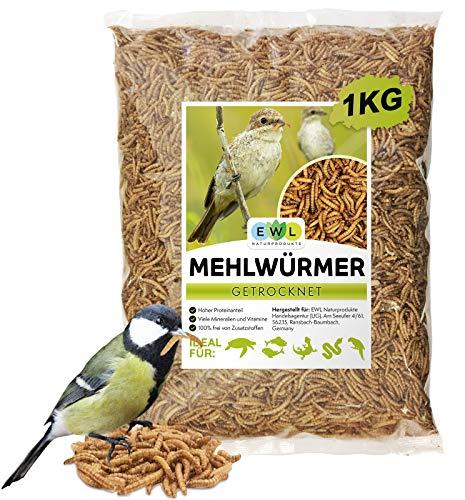 EWL Naturprodukte Mehlwürmer getrocknet 1kg = 6500ml Insektensnack für Vögel, Fische, Schildkröten, Nager und Reptilien