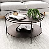 Nathan James Paloma Round Coffee Tea or Cocktail with Raised Tray Top Edge Tables, 2-Tier Minimalist Style Living Room, Dark Oak/Matte Black