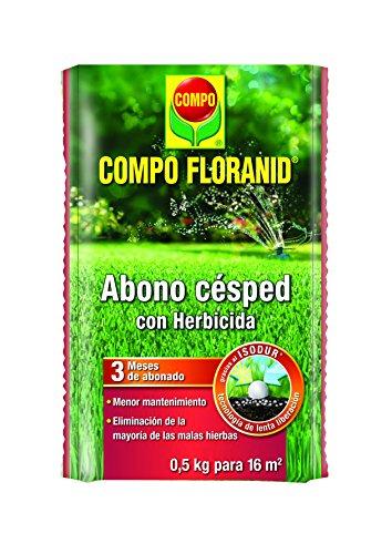Compo 1128302011 Abono Césped Floranid + Herbicida 500G, 24x16x3 cm