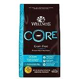 Wellness CORE Natural Grain Free Dry Dog Food, Ocean Whitefish, Herring & Salmon, 4-Pound Bag