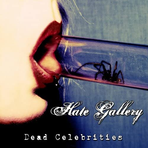 Hate Gallery