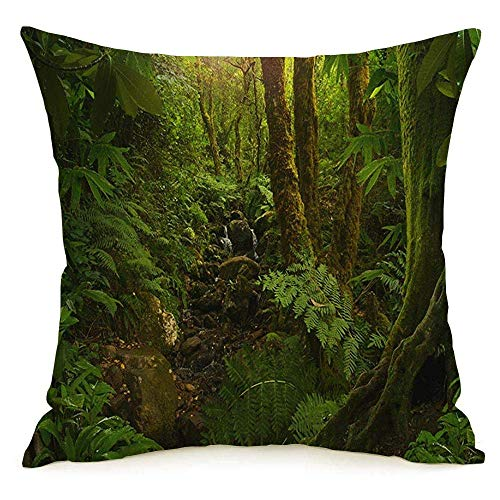 N\A Funda de Almohada Cuadrada de Lino Decorativa Tailandia Asiática Noche Tropical Selva Tropical Vegetación Selva Wilderness Creek Parques Naturales Funda de Almohada al Aire Libre Cojín para sofá
