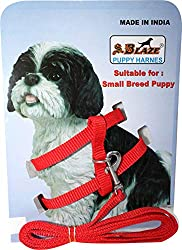 dog chain amazon, amazon dog chain, dog chain online