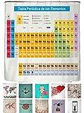 arteneur®- Cortina de Ducha 180x200 Tabla Periódica España (ES) – Cortina de Baño de Tela, Antimoho, Lavable, Impermeable y Opaco con Dobladillo Ponderado y 12 Anillas