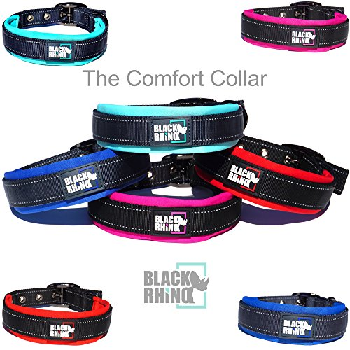 Black Rhino - The Comfort Collar Ultra Soft Neoprene Padded Dog Collar for All Breeds - Heavy Duty Adjustable Reflective Weatherproof (Medium, Aqua/Grey)