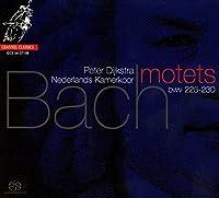Bach, J.S.: Motets by Netherlands Chamber Choir (2008-05-13)