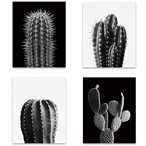 Bestdeal Depot Simple Succulents Patterns Botanical Cactus Photography Minimalism Chic CloseUp Dramatic Duotone Black and White Living Room Unframed Poster Set of 4, 11 x 14 inches