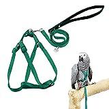 ASOCEA Piuma Regolabile Tether Uccello Harness e guinzaglio per Piccole e Medie Razza pappagalli