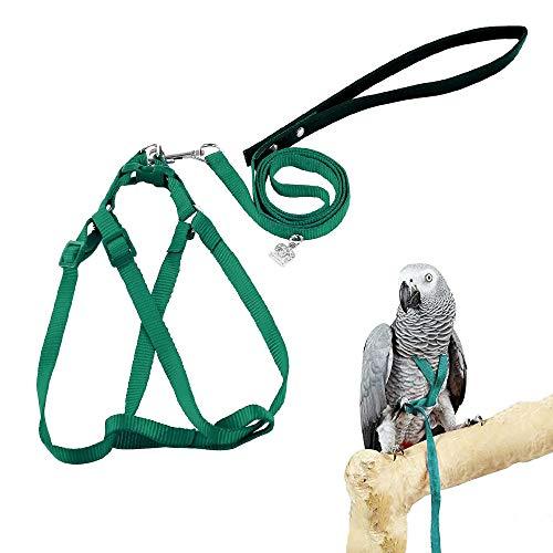 ASOCEA Verstellbares Federgurt-Vogelgeschirr und Leine für Papageien Kleiner bis mittlerer Rassen (klein)