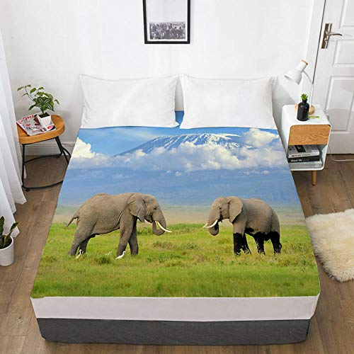 lhmlyl Double Fitted Sheet 3D Digital Home Textile Factory 360 Degree Li Mattress Protector Animal Elephant-Elephant 005-White-F_Size Customization