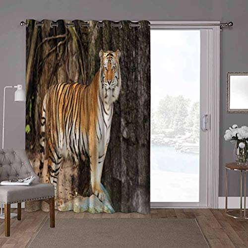 YUAZHOQI Grommet Thermal Insulated Darkening Room Divider Curtain, Tiger,Alert Angry Royal Feline, W52 x L96 Inch Glass Door Curtains for Window(1 Panel)