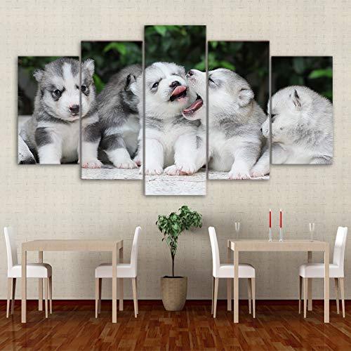 Kunstdruk op canvas, HD-kunstdruk, wandafbeelding, huis, 5 panelen, baby, husky, schattig, decoratie voor woonkamer, wand, kunst, fotolijst L-30x40 30x60 30x80cm Frame