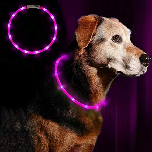 Anicoll LED Leuchthalsband Hunde Halsband - Anicoll USB wiederaufladbar - Längenverstellbarer Haustier Sicherheit Kragen für Hunde und Katzen- 3 Modus 12 Lichte (Lila)