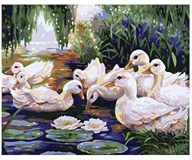 Superlucky Malen nach Zahlen zeichnen Eine Gruppe von Enten DIY Ölgemälde nach Zahlen Malen nach Zahlen Malen nach Zahlen Einzigartiges Geschenk gerahmt 40x50cm B07K8PQTCQ | Billiger als der Preis