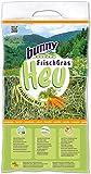 Bunny - Heno Fresco para roedores Adultos Zanahoria 500 gr