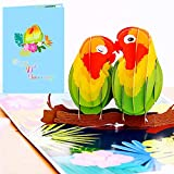Liif 40th Lovebird Anniversary Wedding 3D Greeting POP UP Card, Happy 40th Anniversary Card - For Husband, Wife, Parents, Couple, Grandparents  With Message Note & Envelop   Size 7 x 5 in