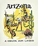 DROB Collectibles Poster, Motiv Delta Airlines, Arizona,