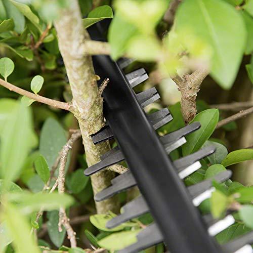 Taille-haies sans fil Bosch - AHS 55-20 LI (Livré avec 1 batterie 18V-2,5Ah)