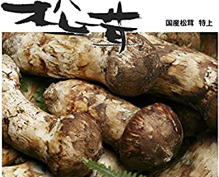 奥会津旬彩館 国産 松茸 特上 蕾から中開き 1kg 会津産 岩手産