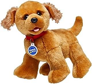 Build A Bear Workshop Promise Pets Copper Golden Retriever