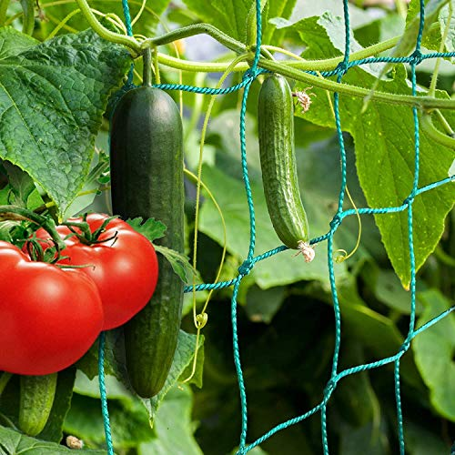 ANYUNKEY Premium Ranknetz mit großer Maschenweite für besonders ertragreiche Ernte von Gurken, Tomaten und und Kletterpflanzen Das Optimale Rankhilfe Netz für Garten und Gewächshaus - (2 x 10 Meter)