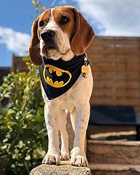 Spoilt Rotten Pet Bandana pour Chien Batman Batdog Taille M