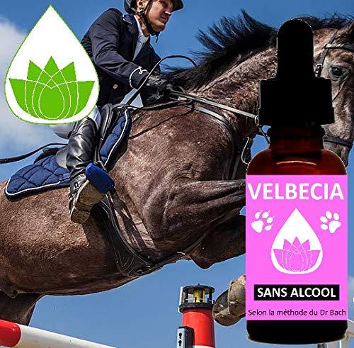 Bachbloesems Animal wedstrijden (paard, honden, kat) - Originele Velbecia Bachbloesem mengsel voor geconcentreerd en koud bloed en controle - 30 ml