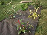 VILMORIN - Woven Mulch Canvas 1.05 m x 20 m - Polypropylene 90 g / m² - Promotes the Growth of Flowers, Hedges, Shrubs - Stops Weeds - Limits Watering - Protects the Soil