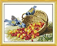 クロスステッチキット刻印刺繡-鳥と果物-大人の初心者スターターキット-DIYクロスステッチ針仕事フルレンジのプリントパターン工芸品家の装飾ギフト11CT(16x20インチ)