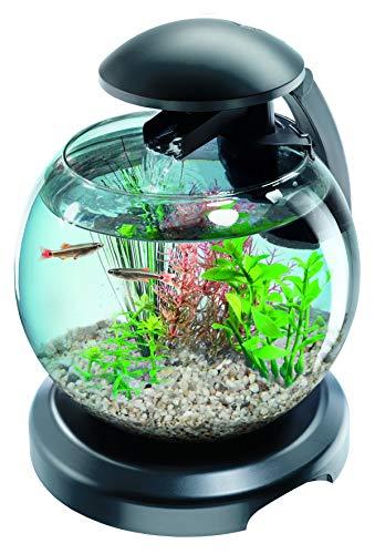 Best4Pets Distribution Sp. z o.o. -  Tetra Aquarium Betta