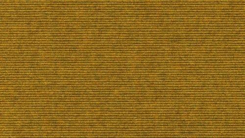 Tretford rond tapijt gefestonneerd. D 300 cm 560 curry.