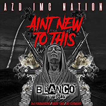 Aint New To This (feat. Baby Gas, Ag Cubano & Dj Habanero)