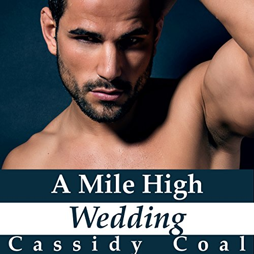 A Mile High Wedding audiobook cover art