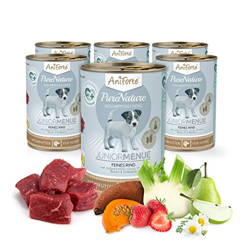AniForte Hundefutter Nass Junior Rind 6 x 400g – hundefutter nass junior, nassfutter Hund junior, hundefutter junior, real Nature hundefutter junior, wolfsblut hundefutter junior, hundefutter welpen
