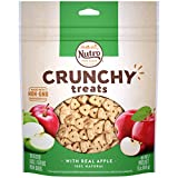 NUTRO Small Crunchy Natural Dog Treats with Real Apple, 16 oz. Bag