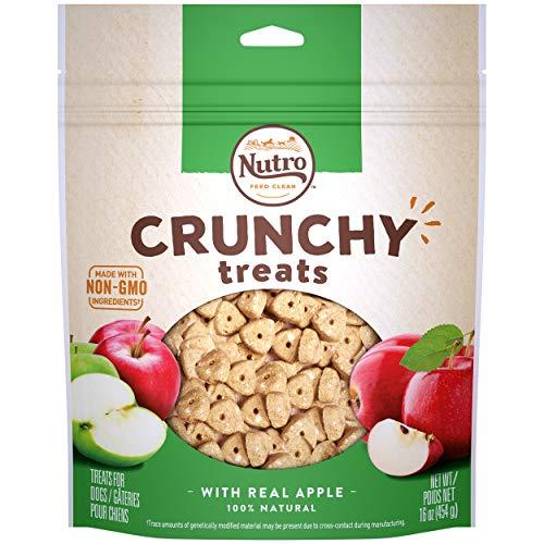 NUTRO Crunchy Dog Treats with Real Apple, 16 Ounce Bag