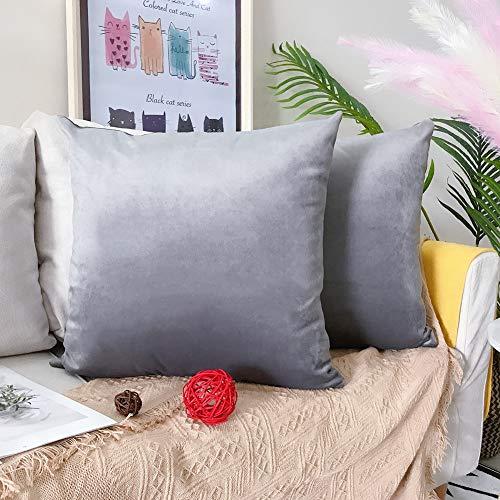 LAXEUYO Juego de 2 Terciopelo Funda de Cojine 50x50 cm Decoración Almohada Caso de la Cubierta Decorativopara Sala de Estar Sofá - Silver Gray