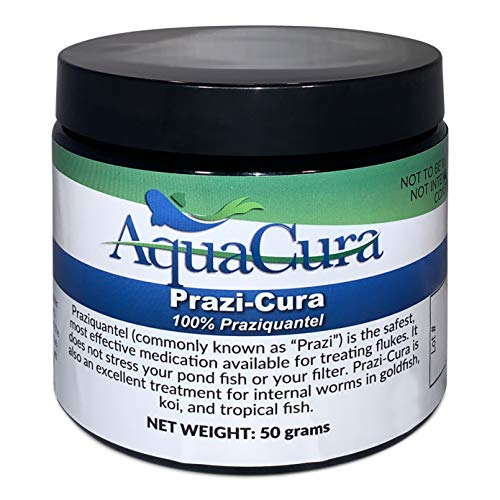 AquaCura Praziquantel Fish Medicine – 50 grams - Ultra-Efficient Fish Flukes Treatment Powder for Gold, Koi & Tropical Fish - Pond Water Conditioner for Freshwater & Saltwater - No Added Antibiotic