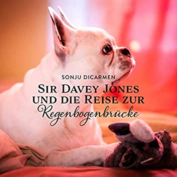 Sir Davey Jones und die Reise zur Regenbogenbrücke