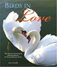 Birds in Love: The Secret Courting & Mating Rituals of Extraordinary Birds