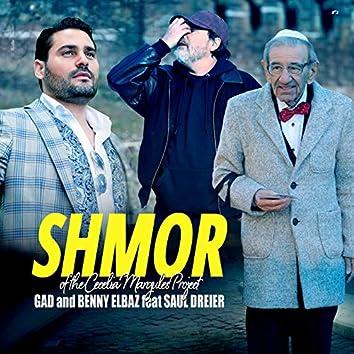Shmor (Cecelia Margules Project)