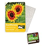 Garden Roll Out Pre-Seeded Flower Mats - Add Beautiful Flowers to Any Outdoor Living Area - Includes 1 Seed Mat and Soil Block (Giant Sunflower)
