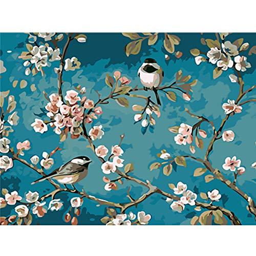 EUFJSDHF schilderen op nummer, kleuren van schilderijen op nummer, vogels aquarel dieren afbeelding digitale kleuren op cijfers met kleuren 40x50cm